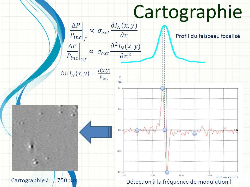 Cartographie Profil du faisceau focalisé Détection à la fréquence de modulation f