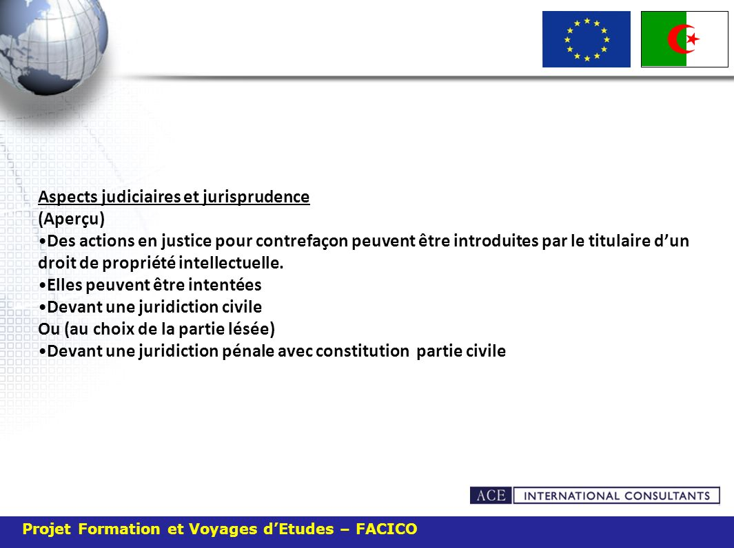 Projet Formation et Voyages dEtudes – FACICO Aspects judiciaires et jurisprudence (Aperçu) Des actions en justice pour contrefaçon peuvent être introduites par le titulaire dun droit de propriété intellectuelle.