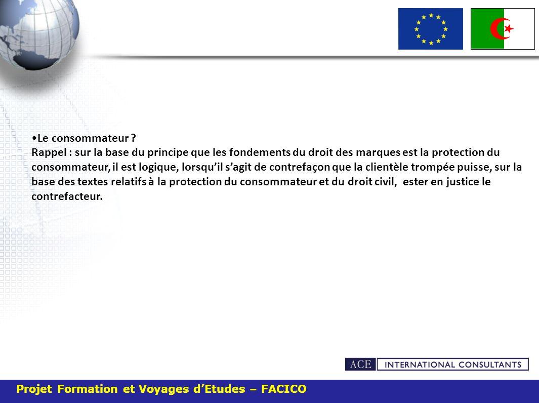 Projet Formation et Voyages dEtudes – FACICO Le consommateur .