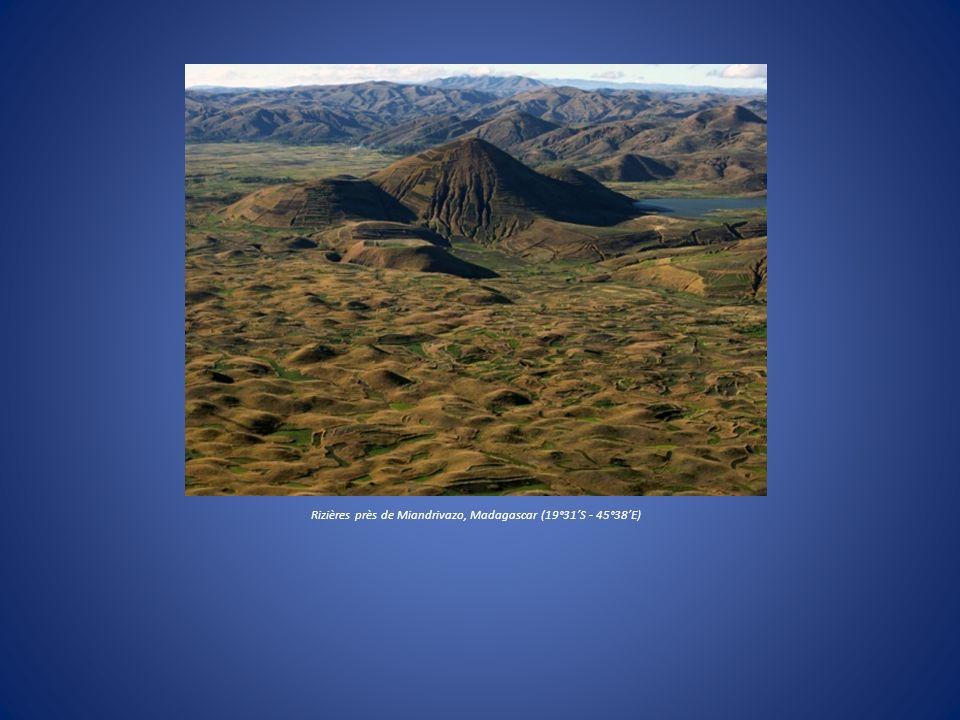 Rizières près de Miandrivazo, Madagascar (19°31S - 45°38E)