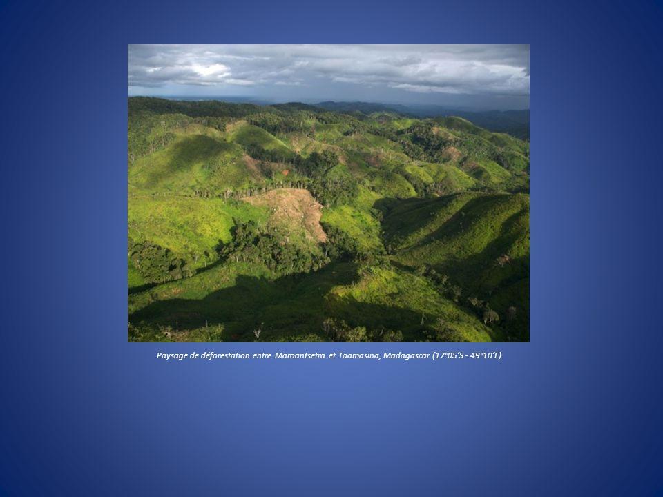 Paysage de déforestation entre Maroantsetra et Toamasina, Madagascar (17°05S - 49°10E)