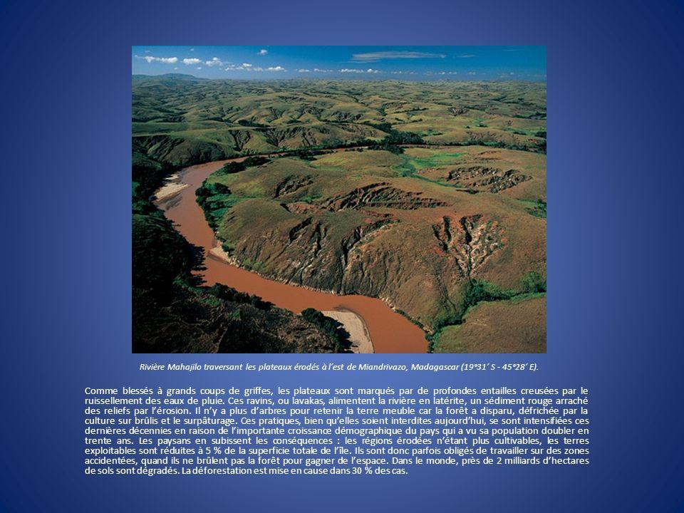 Rivière Mahajilo traversant les plateaux érodés à lest de Miandrivazo, Madagascar (19°31 S - 45°28 E). Comme blessés à grands coups de griffes, les pl
