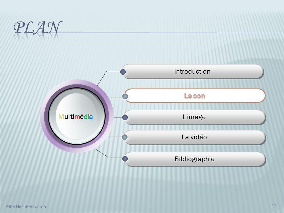 Introduction Limage La vidéo Bibliographie M u l ti m é d i a 17 Mlle Hechkel Amina