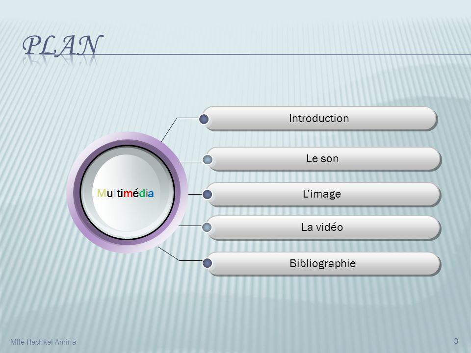Introduction Le son Limage La vidéo Bibliographie M u l ti m é d i a 3 Mlle Hechkel Amina