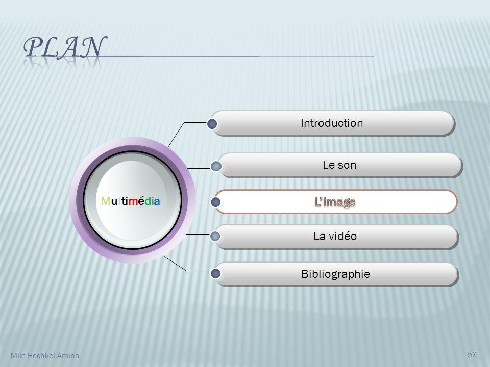 Introduction La vidéo Bibliographie M u l ti m é d i a Le son 53 Mlle Hechkel Amina