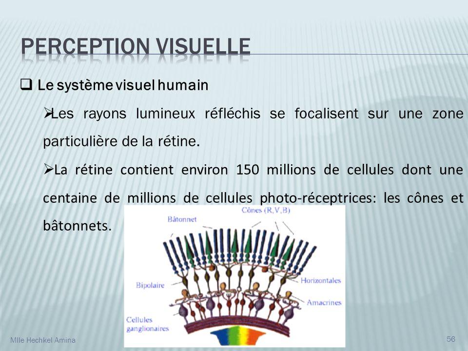 Le système visuel humain Les rayons lumineux réfléchis se focalisent sur une zone particulière de la rétine. La rétine contient environ 150 millions d
