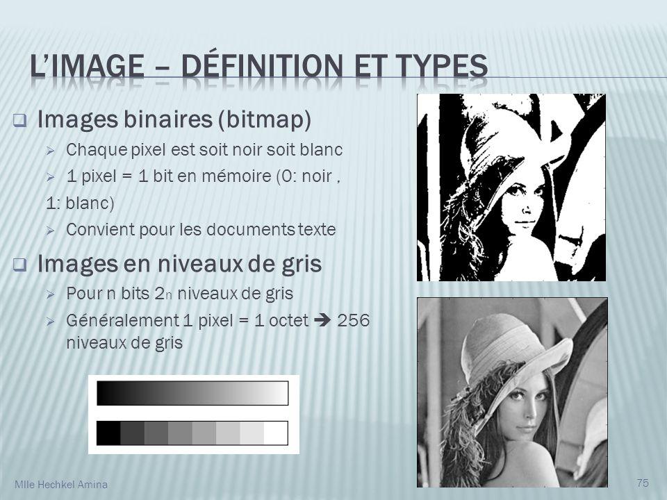 Images binaires (bitmap) Chaque pixel est soit noir soit blanc 1 pixel = 1 bit en mémoire (0: noir, 1: blanc) Convient pour les documents texte Images en niveaux de gris Pour n bits 2 n niveaux de gris Généralement 1 pixel = 1 octet 256 niveaux de gris 75 Mlle Hechkel Amina