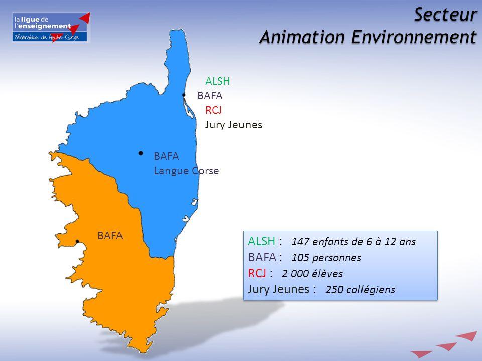 Secteur Animation Environnement ALSH BAFA RCJ Jury Jeunes BAFA Langue Corse ALSH : 147 enfants de 6 à 12 ans BAFA : 105 personnes RCJ : 2 000 élèves J