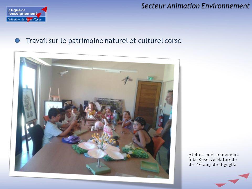 Secteur Animation Environnement Travail sur le patrimoine naturel et culturel corse Atelier environnement à la Réserve Naturelle de lEtang de Biguglia