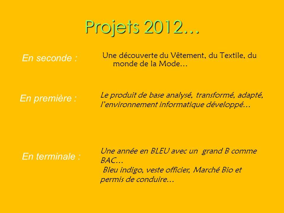 Projets 2012… Une découverte du Vêtement, du Textile, du monde de la Mode… Le produit de base analysé, transformé, adapté, lenvironnement informatique