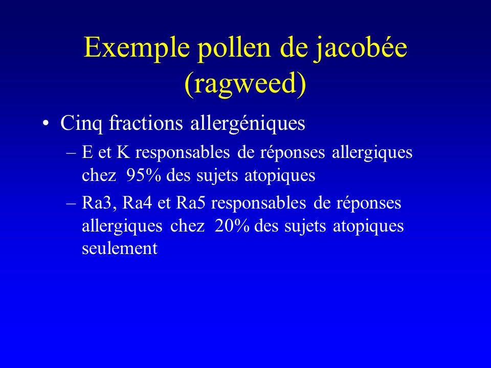 Exemple pollen de jacobée (ragweed) Cinq fractions allergéniques –E et K responsables de réponses allergiques chez 95% des sujets atopiques –Ra3, Ra4 et Ra5 responsables de réponses allergiques chez 20% des sujets atopiques seulement