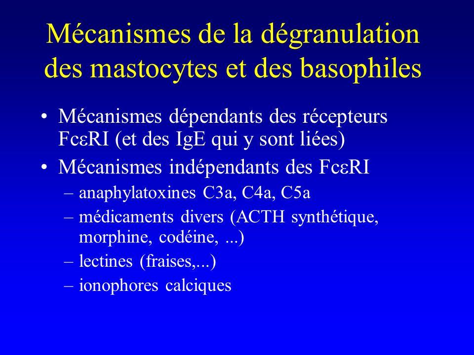 Mécanismes de la dégranulation des mastocytes et des basophiles Mécanismes dépendants des récepteurs Fc RI (et des IgE qui y sont liées) Mécanismes in