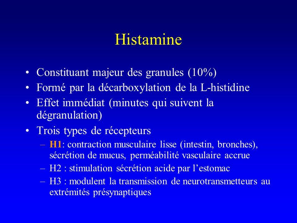 Histamine Constituant majeur des granules (10%) Formé par la décarboxylation de la L-histidine Effet immédiat (minutes qui suivent la dégranulation) Trois types de récepteurs –H1: contraction musculaire lisse (intestin, bronches), sécrétion de mucus, perméabilité vasculaire accrue –H2 : stimulation sécrétion acide par lestomac –H3 : modulent la transmission de neurotransmetteurs au extrémités présynaptiques