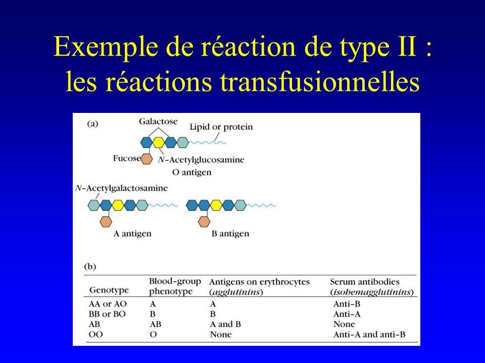 Exemple de réaction de type II : les réactions transfusionnelles