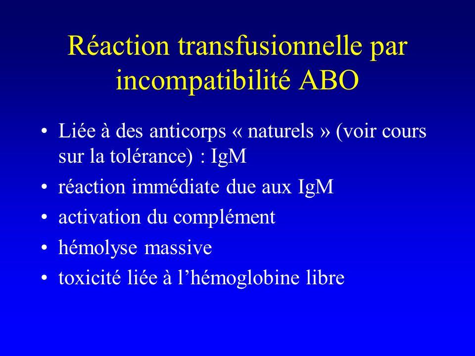 Réaction transfusionnelle par incompatibilité ABO Liée à des anticorps « naturels » (voir cours sur la tolérance) : IgM réaction immédiate due aux IgM activation du complément hémolyse massive toxicité liée à lhémoglobine libre