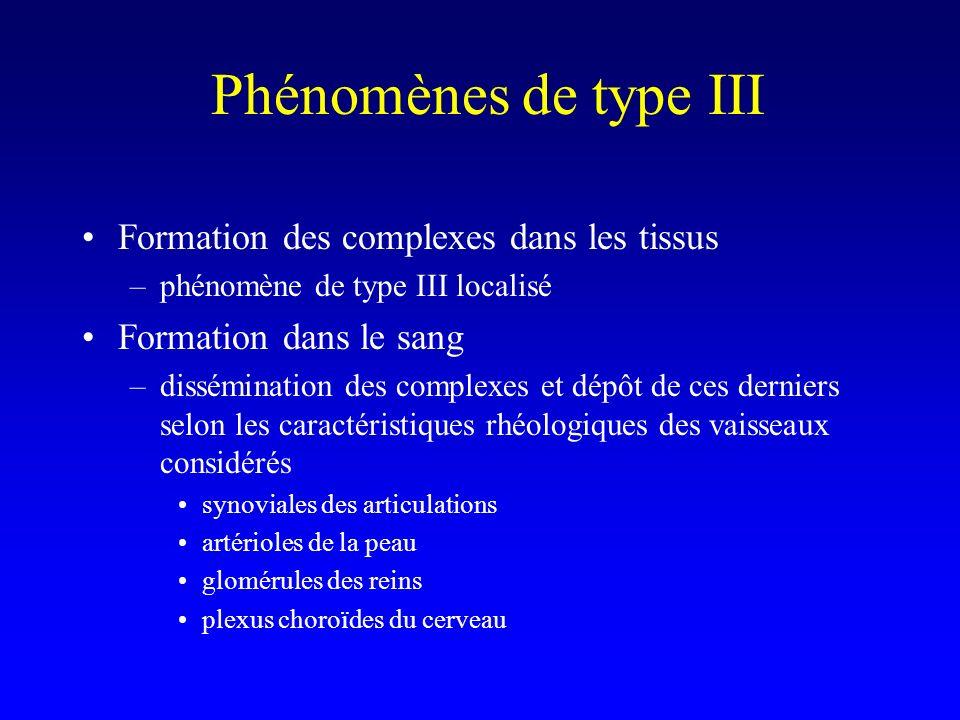 Phénomènes de type III Formation des complexes dans les tissus –phénomène de type III localisé Formation dans le sang –dissémination des complexes et