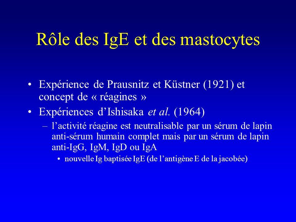 Rôle des IgE et des mastocytes Expérience de Prausnitz et Küstner (1921) et concept de « réagines » Expériences dIshisaka et al. (1964) –lactivité réa