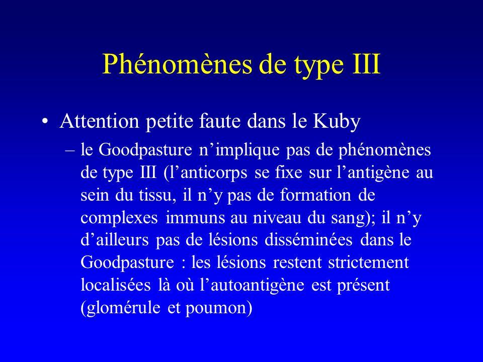 Phénomènes de type III Attention petite faute dans le Kuby –le Goodpasture nimplique pas de phénomènes de type III (lanticorps se fixe sur lantigène au sein du tissu, il ny pas de formation de complexes immuns au niveau du sang); il ny dailleurs pas de lésions disséminées dans le Goodpasture : les lésions restent strictement localisées là où lautoantigène est présent (glomérule et poumon)