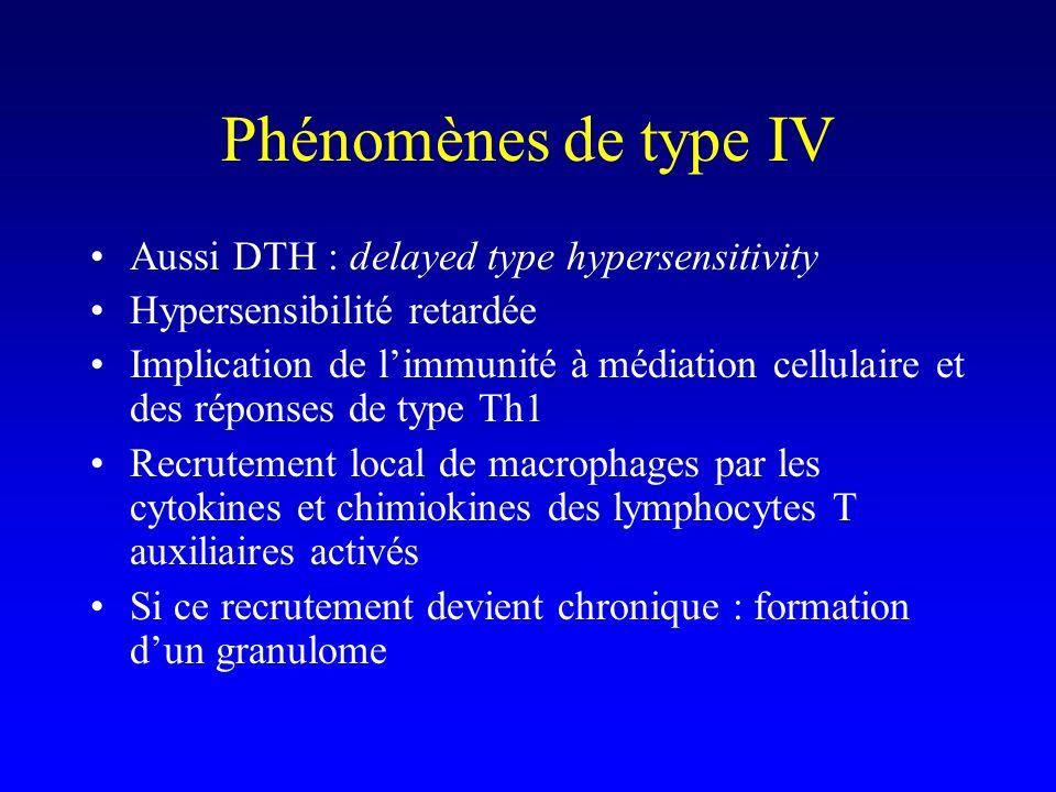 Phénomènes de type IV Aussi DTH : delayed type hypersensitivity Hypersensibilité retardée Implication de limmunité à médiation cellulaire et des réponses de type Th1 Recrutement local de macrophages par les cytokines et chimiokines des lymphocytes T auxiliaires activés Si ce recrutement devient chronique : formation dun granulome
