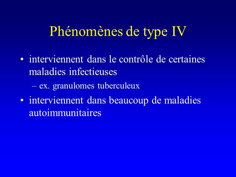 Phénomènes de type IV interviennent dans le contrôle de certaines maladies infectieuses –ex.