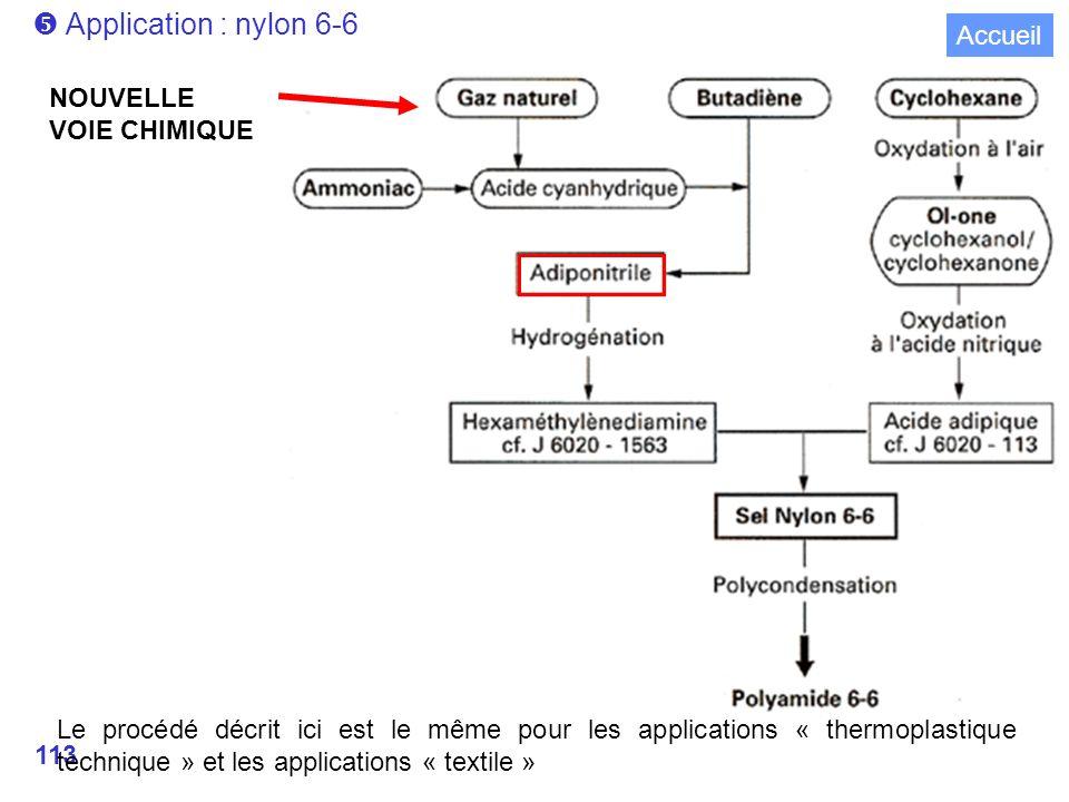 113 Application : nylon 6-6 Le procédé décrit ici est le même pour les applications « thermoplastique technique » et les applications « textile » NOUVELLE VOIE CHIMIQUE Accueil