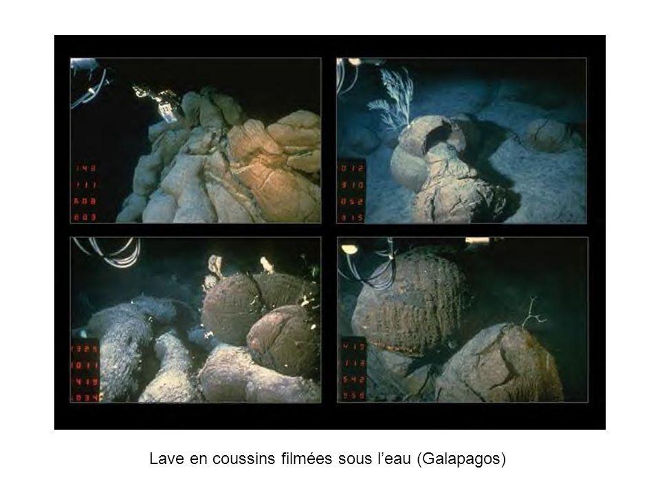 Lave en coussins filmées sous leau (Galapagos)