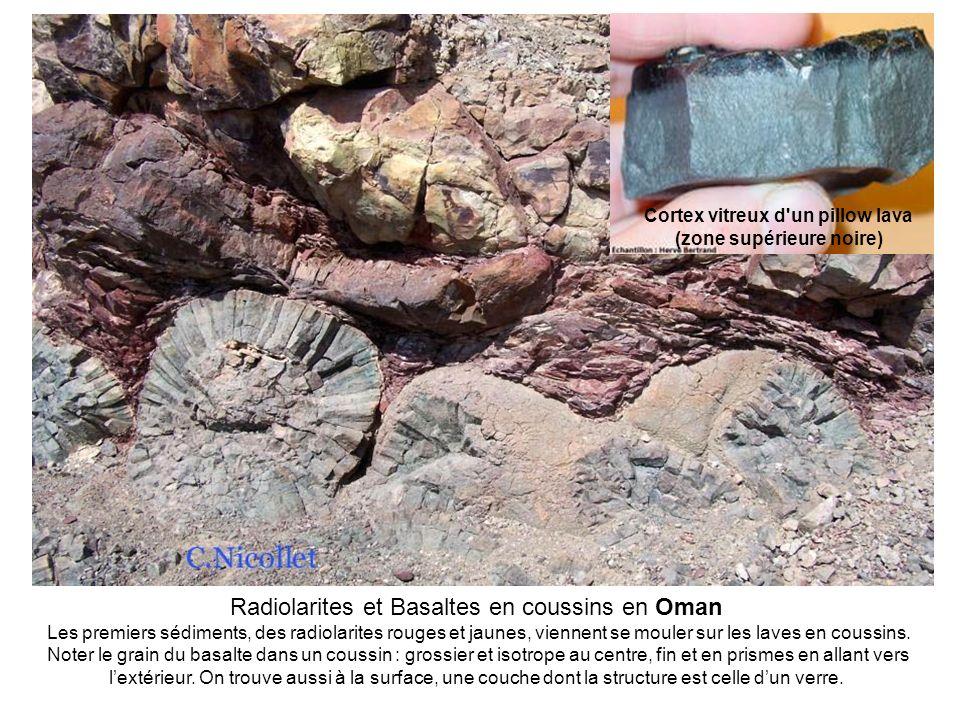 Radiolarites et Basaltes en coussins en Oman Les premiers sédiments, des radiolarites rouges et jaunes, viennent se mouler sur les laves en coussins.