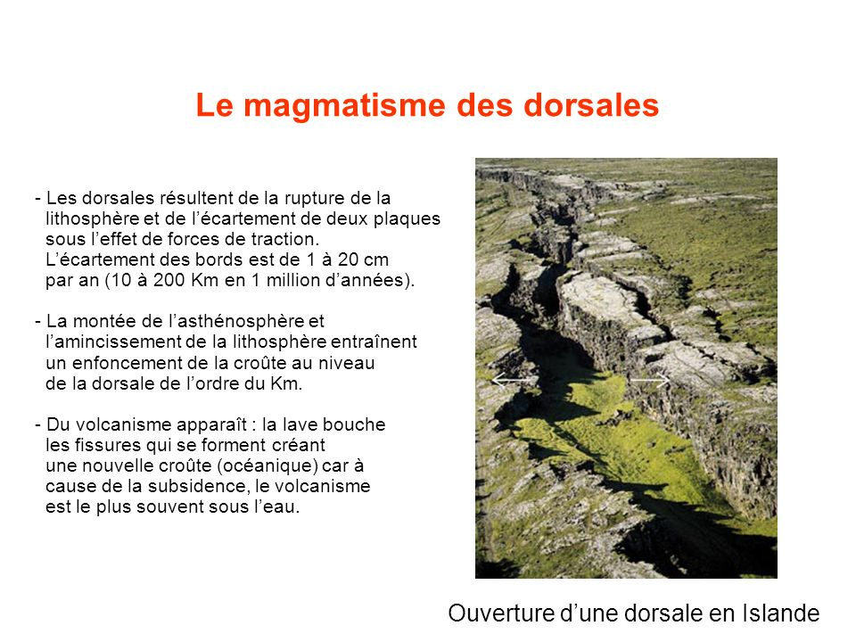 Ouverture dune dorsale en Islande - Les dorsales résultent de la rupture de la lithosphère et de lécartement de deux plaques sous leffet de forces de