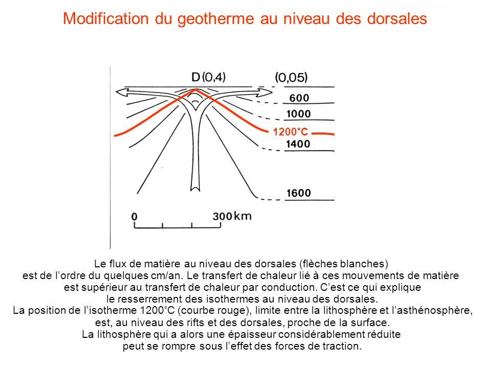 Le flux de matière au niveau des dorsales (flèches blanches) est de lordre du quelques cm/an. Le transfert de chaleur lié à ces mouvements de matière