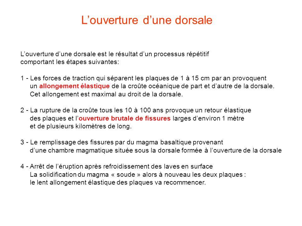 Louverture dune dorsale est le résultat dun processus répétitif comportant les étapes suivantes: 1 - Les forces de traction qui séparent les plaques d