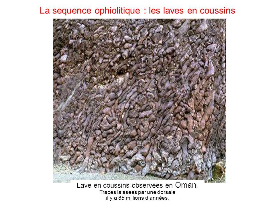 La sequence ophiolitique : les laves en coussins Lave en coussins observées en Oman, Traces laissées par une dorsale il y a 85 millions dannées.