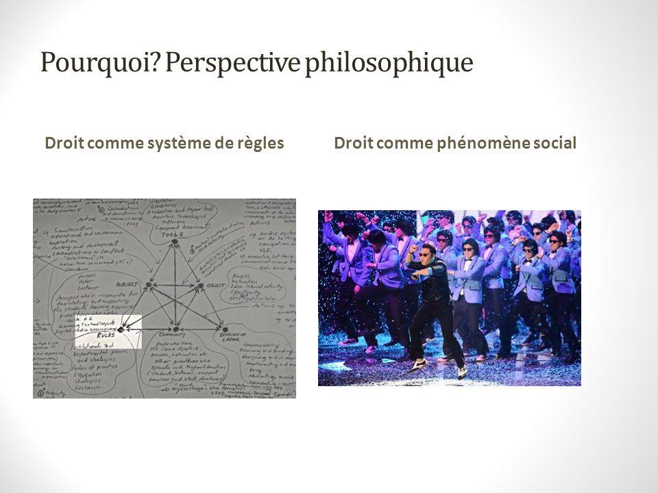 Pourquoi? Perspective philosophique Droit comme système de règlesDroit comme phénomène social