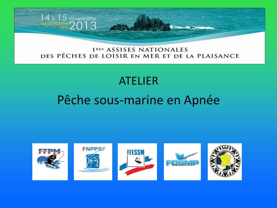 ATELIER Pêche sous-marine en Apnée