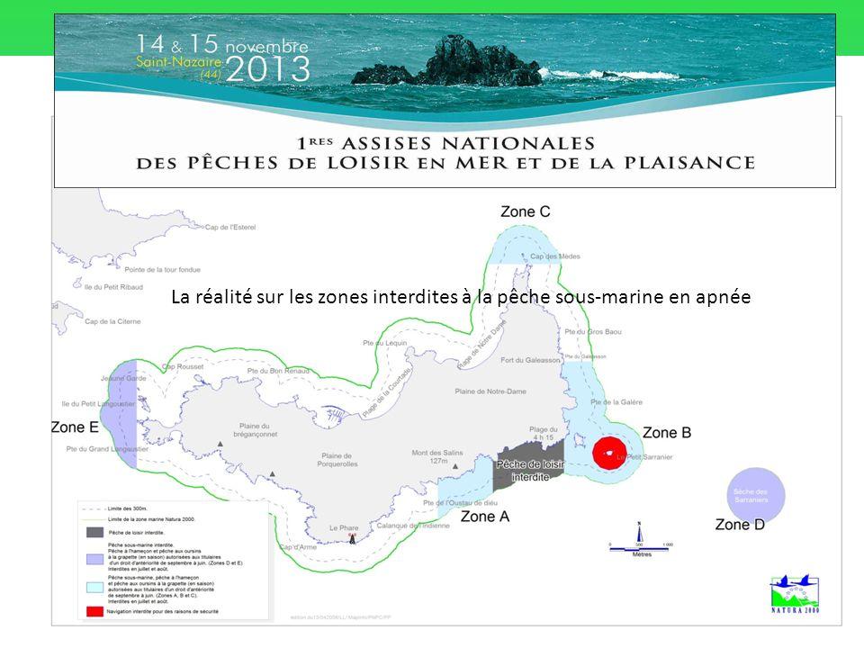 La réalité sur les zones interdites à la pêche sous-marine en apnée