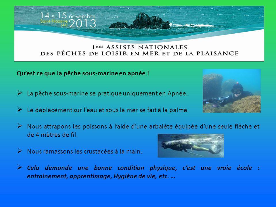 Quest ce que la pêche sous-marine en apnée .La pêche sous-marine se pratique uniquement en Apnée.