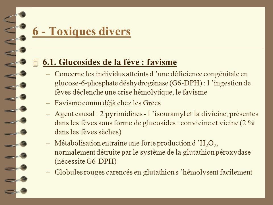 6 - Toxiques divers 4 6.1. Glucosides de la fève : favisme –Concerne les individus atteints d une déficience congénitale en glucose-6-phosphate déshyd