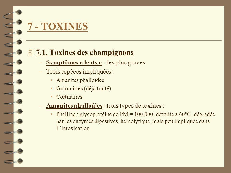 7 - TOXINES 4 7.1. Toxines des champignons –Symptômes « lents » : les plus graves –Trois espèces impliquées : Amanites phalloïdes Gyromitres (déjà tra