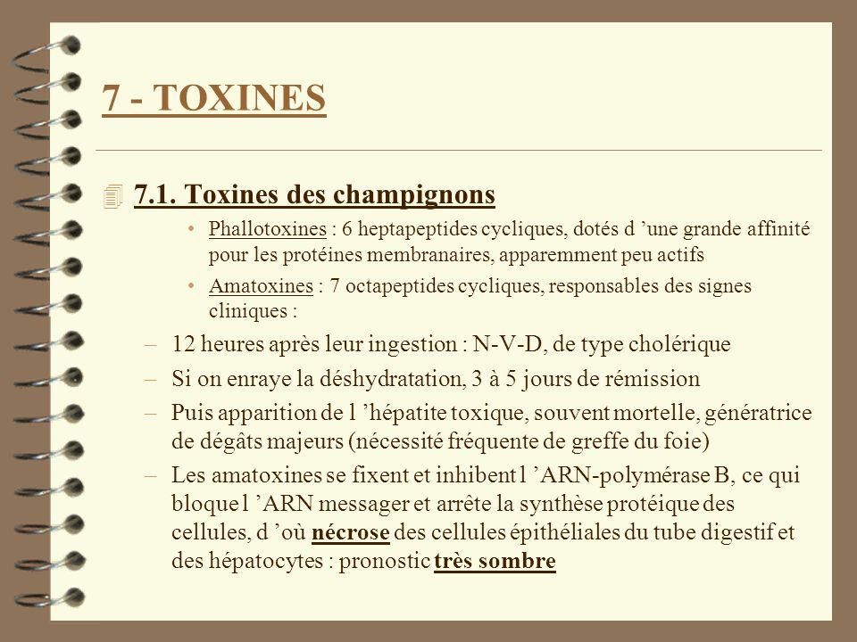 7 - TOXINES 4 7.1. Toxines des champignons Phallotoxines : 6 heptapeptides cycliques, dotés d une grande affinité pour les protéines membranaires, app