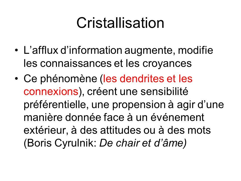 Cristallisation Lafflux dinformation augmente, modifie les connaissances et les croyances Ce phénomène (les dendrites et les connexions), créent une s