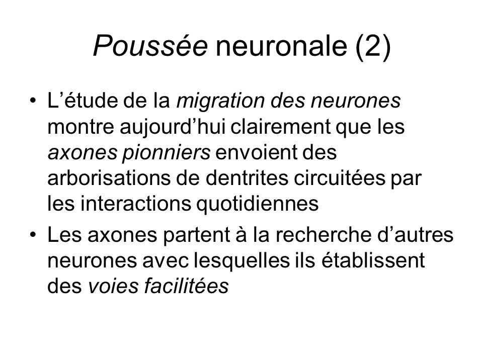 Poussée neuronale (2) Létude de la migration des neurones montre aujourdhui clairement que les axones pionniers envoient des arborisations de dentrite