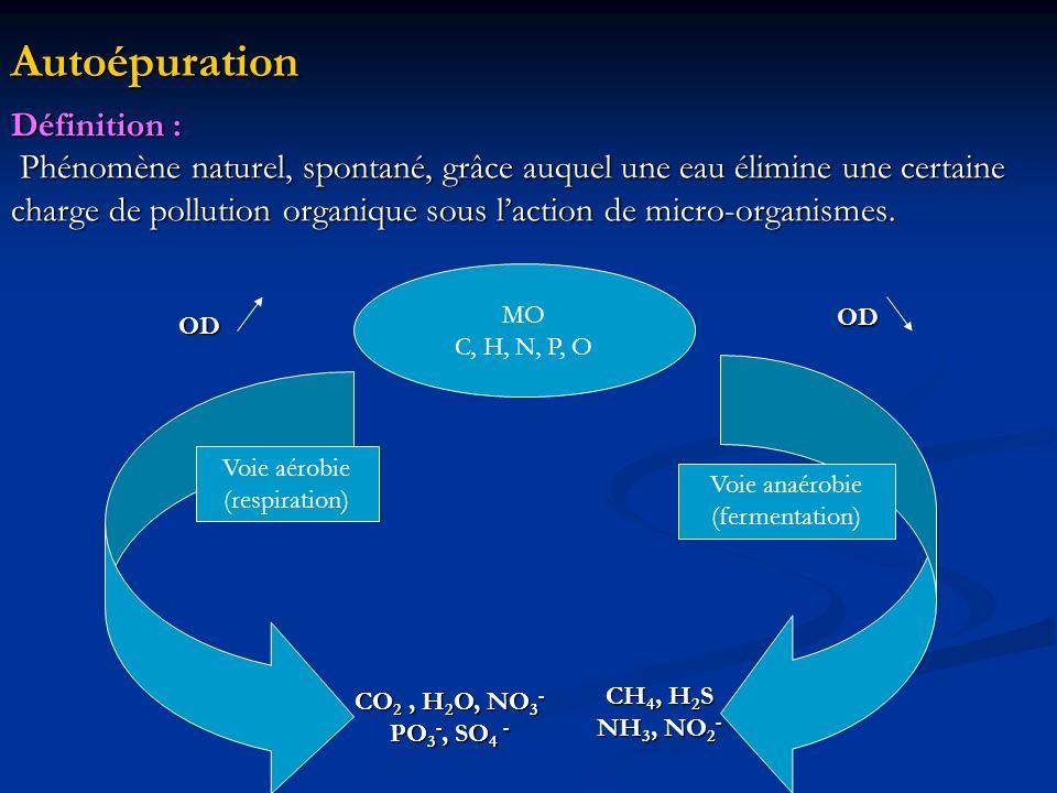 Autoépuration Définition : Phénomène naturel, spontané, grâce auquel une eau élimine une certaine Phénomène naturel, spontané, grâce auquel une eau él