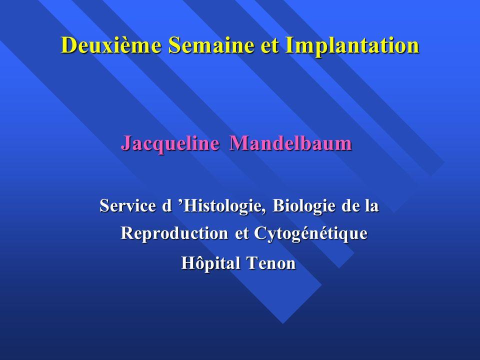 Les deux acteurs en présence: le blastocyste éclos et l endomètre La deuxième semaine du développement ( J7 à J14 ) correspond à : La deuxième semaine du développement ( J7 à J14 ) correspond à : La phase d implantation du blastocyste dans la muqueuse utérine ( nidation) La phase d implantation du blastocyste dans la muqueuse utérine ( nidation) Aux modifications de la masse cellulaire interne (MCI) qui aboutissent à la constitution d un embryon didermique Aux modifications de la masse cellulaire interne (MCI) qui aboutissent à la constitution d un embryon didermique
