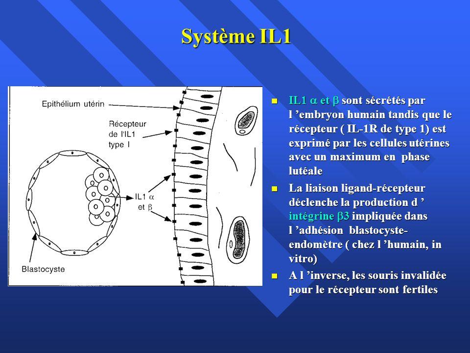 Système IL1 IL1 et sont sécrétés par l embryon humain tandis que le récepteur ( IL-1R de type 1) est exprimé par les cellules utérines avec un maximum