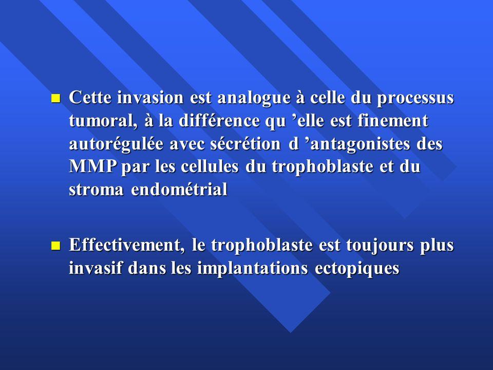 Cette invasion est analogue à celle du processus tumoral, à la différence qu elle est finement autorégulée avec sécrétion d antagonistes des MMP par l