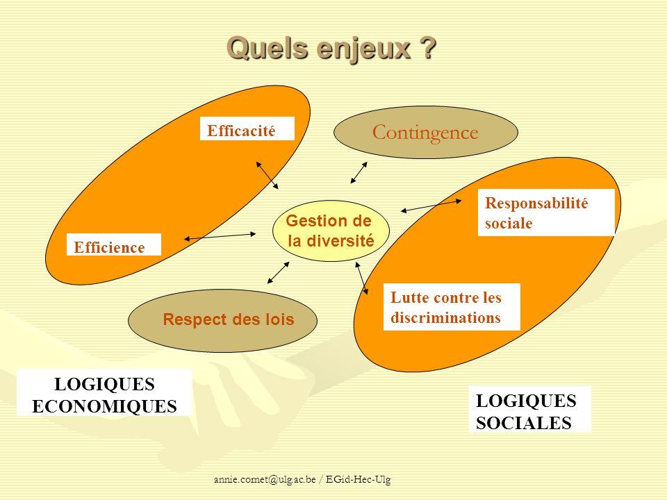 annie.cornet@ulg.ac.be / EGid-Hec-Ulg Quels enjeux ? LOGIQUES ECONOMIQUES Efficacité Efficience LOGIQUES SOCIALES Contingence Lutte contre les discrim
