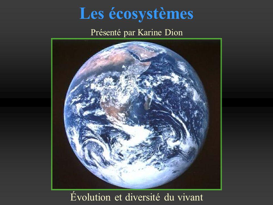 Les écosystèmes Évolution et diversité du vivant Présenté par Karine Dion