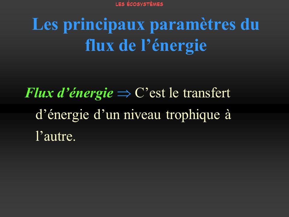 Les principaux paramètres du flux de lénergie Flux dénergie Cest le transfert dénergie dun niveau trophique à lautre. LES ÉCOSYSTÈMES