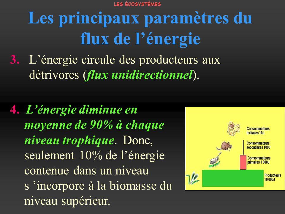 3. Lénergie circule des producteurs aux détrivores (flux unidirectionnel). Les principaux paramètres du flux de lénergie 4. Lénergie diminue en moyenn