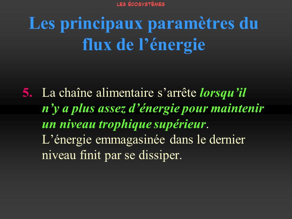 Les principaux paramètres du flux de lénergie 5. La chaîne alimentaire sarrête lorsquil ny a plus assez dénergie pour maintenir un niveau trophique su
