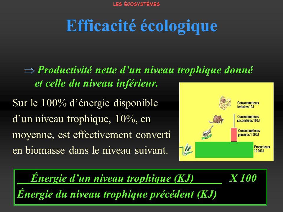 Efficacité écologique Productivité nette dun niveau trophique donné et celle du niveau inférieur. Sur le 100% dénergie disponible dun niveau trophique